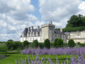 Beautiful Loire Valley