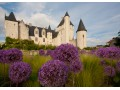 Chateau of Rivau - Loire Valley - France - (C) Chateau of Rivau (2)
