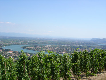 Rhone Valley small group Day Tour of Chateauneuf du Pape, two wine tasting at local cellars - Mon, Wed, Thu, Sat