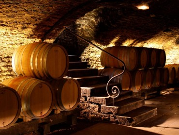 Divine Day Tour - Burgundy Wine Tour - Tasting 10 wines - Tuesday to Saturday