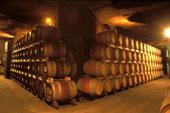 Chinon cellar and barrels