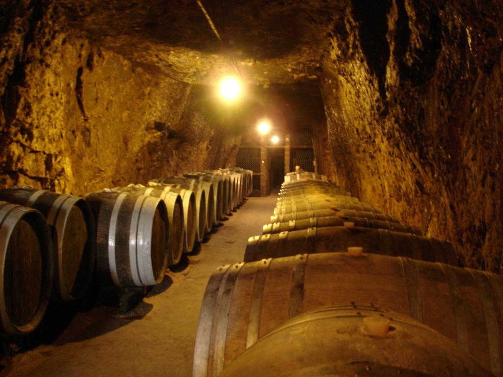 Bourgueil wines in barrels