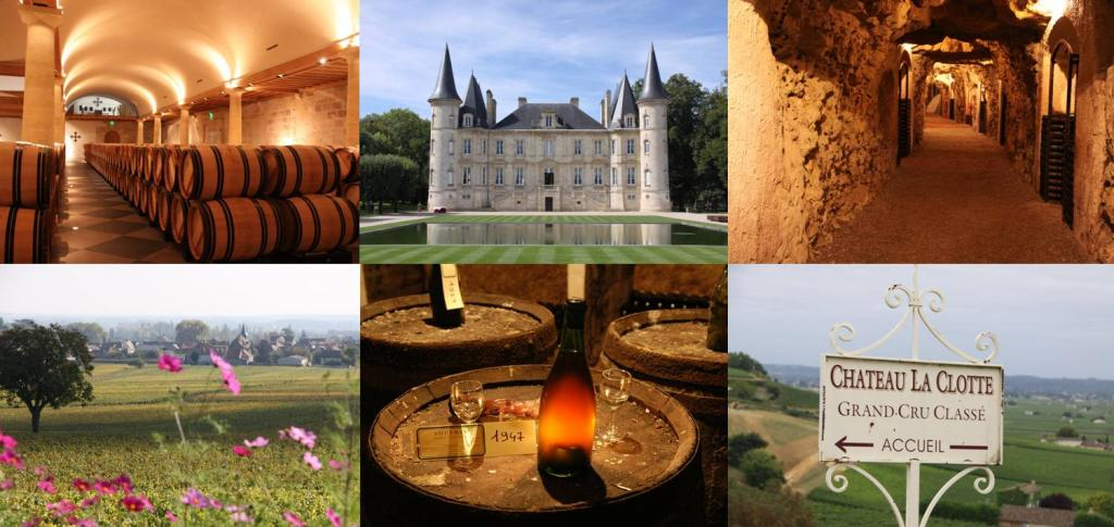France Luxury guided wine tours